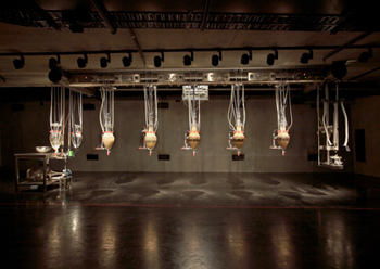 "Wim Delvoye's ""Cloaca"" aka The Poo Machine. Photo credit: MONA/Leigh Carmichael"